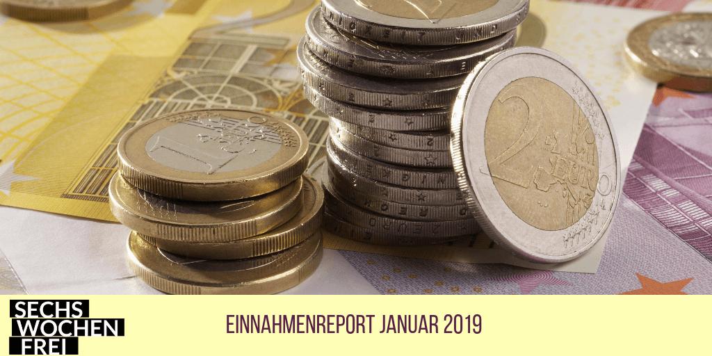 einnahmenreport januar 2019 (1)